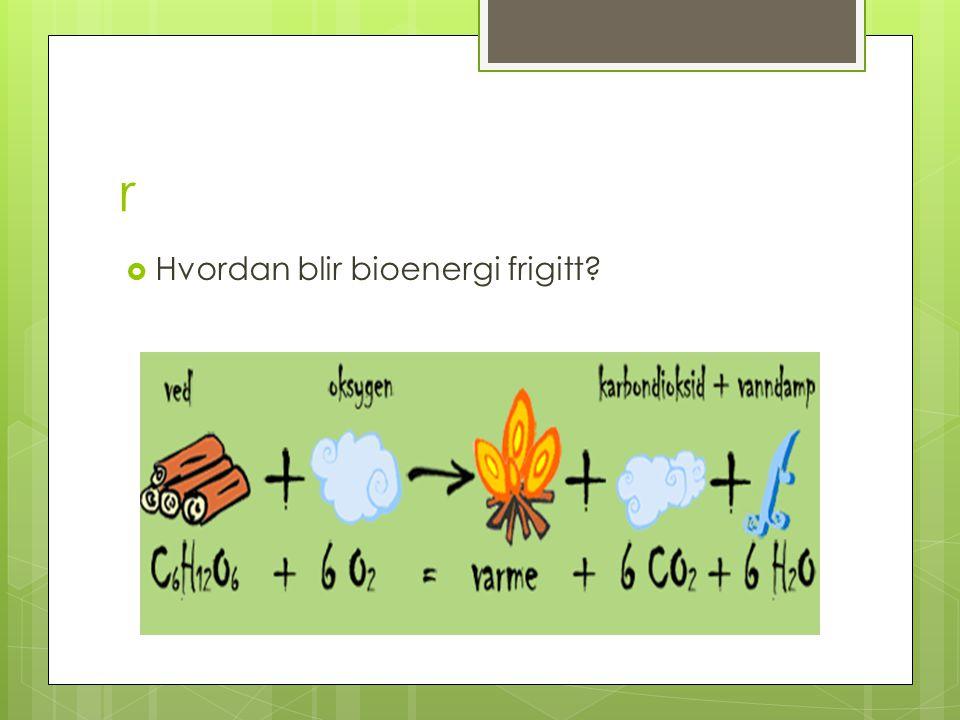 r  Hvordan blir bioenergi frigitt?