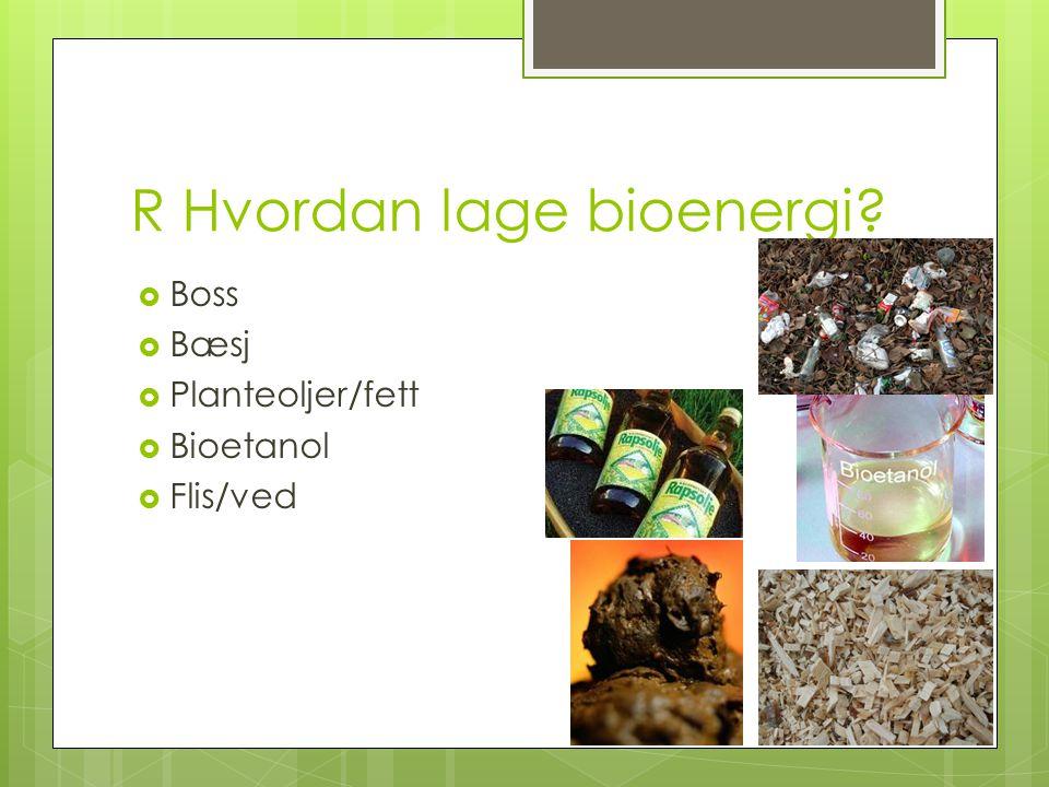 R Hvordan lage bioenergi?  Boss  Bæsj  Planteoljer/fett  Bioetanol  Flis/ved