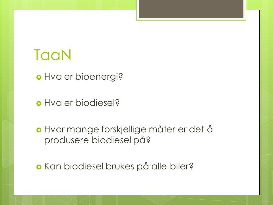 TaaN  Hva er bioenergi. Hva er biodiesel.