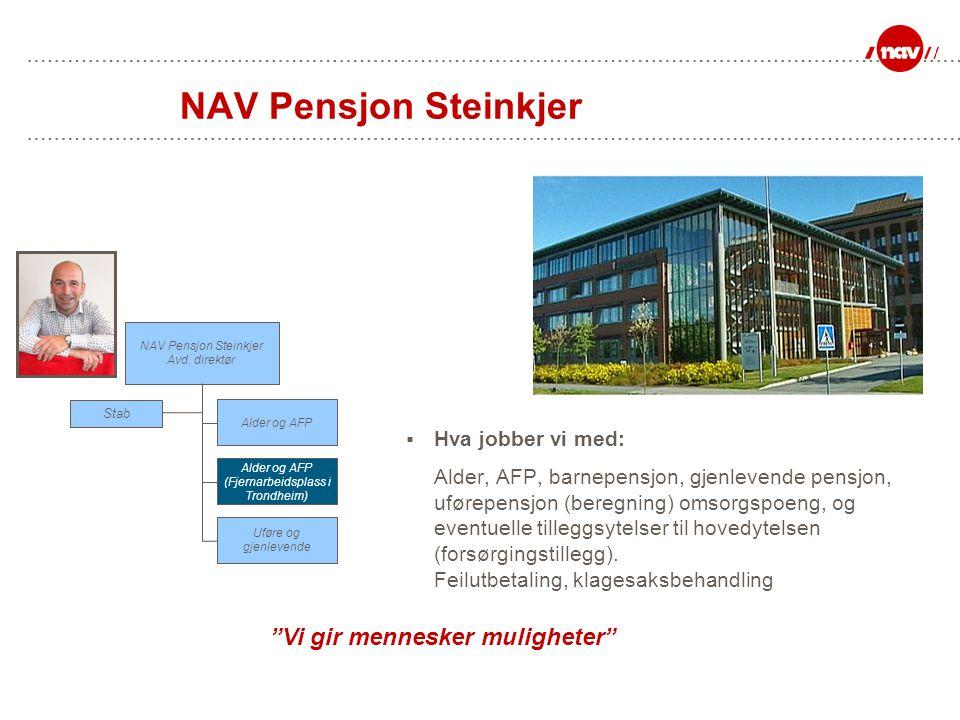  Hva jobber vi med: Alder, AFP, barnepensjon, gjenlevende pensjon, uførepensjon (beregning) omsorgspoeng, og eventuelle tilleggsytelser til hovedytel