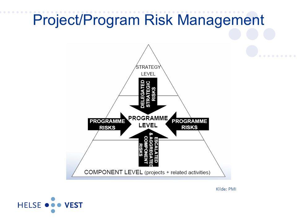 Project/Program Risk Management Kilde: PMI