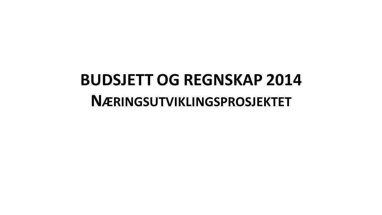 BUDSJETT OG REGNSKAP 2014 N ÆRINGSUTVIKLINGSPROSJEKTET