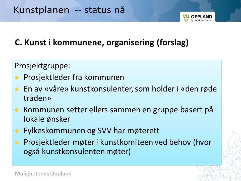 Mulighetenes Oppland C. Kunst i kommunene, organisering (forslag)