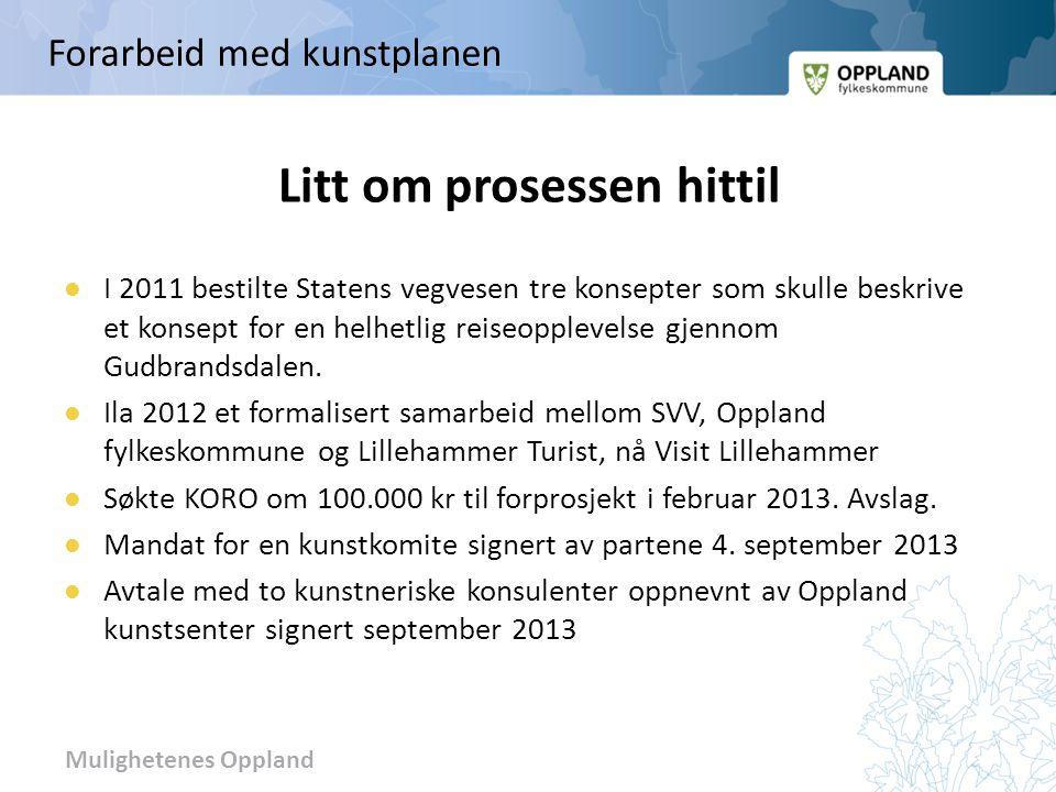 Mulighetenes Oppland Litt om prosessen hittil I 2011 bestilte Statens vegvesen tre konsepter som skulle beskrive et konsept for en helhetlig reiseoppl
