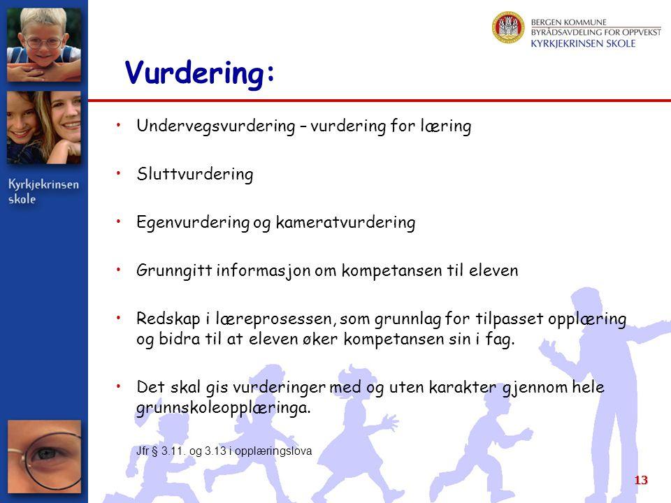 13 Vurdering: Undervegsvurdering – vurdering for læring Sluttvurdering Egenvurdering og kameratvurdering Grunngitt informasjon om kompetansen til elev