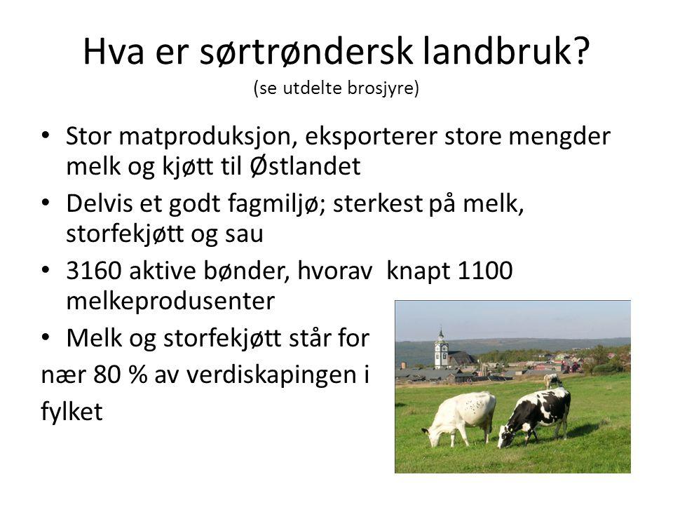 Hva er sørtrøndersk landbruk? (se utdelte brosjyre) Stor matproduksjon, eksporterer store mengder melk og kjøtt til Østlandet Delvis et godt fagmiljø;