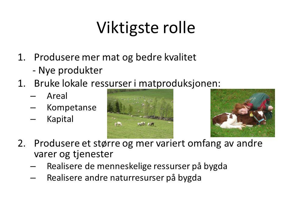 Viktigste rolle 1.Produsere mer mat og bedre kvalitet - Nye produkter 1.Bruke lokale ressurser i matproduksjonen: – Areal – Kompetanse – Kapital 2.Produsere et større og mer variert omfang av andre varer og tjenester – Realisere de menneskelige ressurser på bygda – Realisere andre naturresurser på bygda