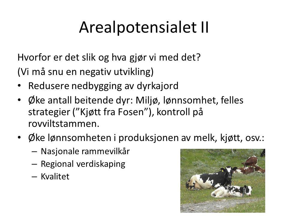 Arealpotensialet II Hvorfor er det slik og hva gjør vi med det? (Vi må snu en negativ utvikling) Redusere nedbygging av dyrkajord Øke antall beitende