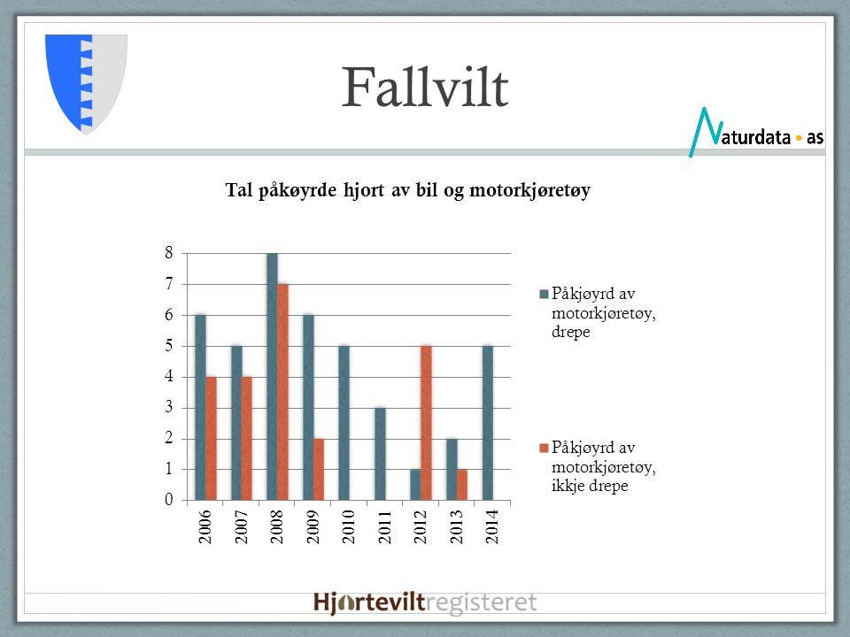 Fallvilt
