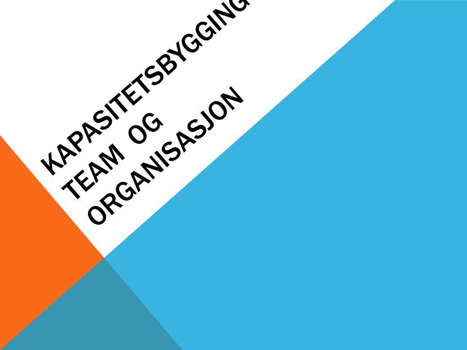 KAPASITETSBYGGING I TEAM OG ORGANISASJON