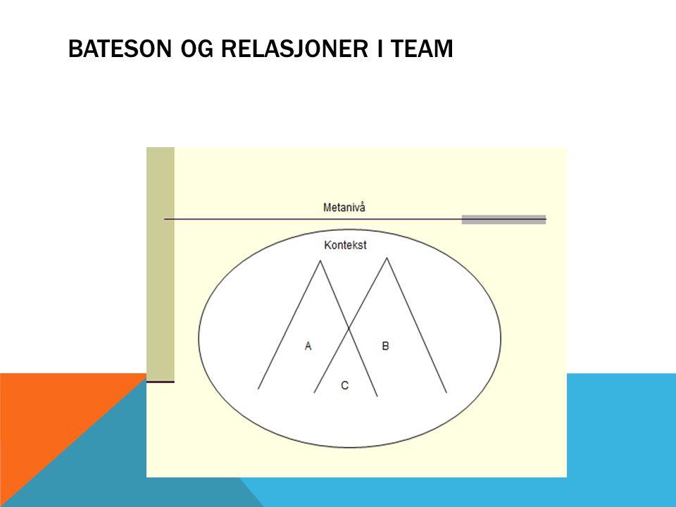 BATESON OG RELASJONER I TEAM