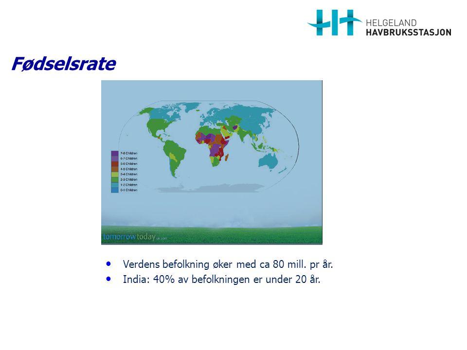 En fremtidsrettet, viktig og bærekraftig næring. Oppdrettsnæringen TAKK FOR OPPMERKSOMHETEN