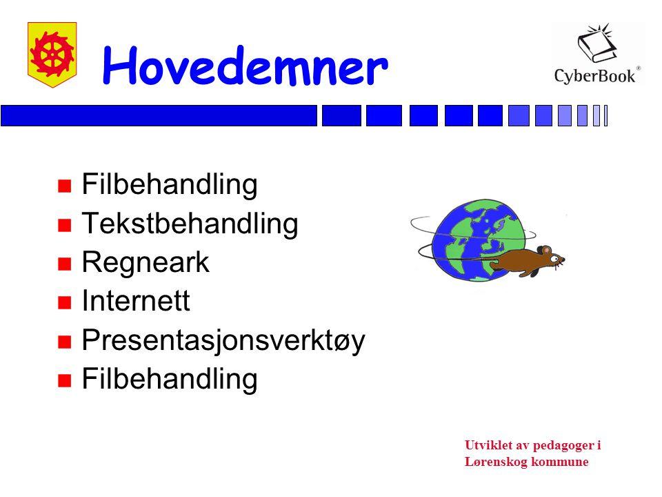 Utviklet av pedagoger i Lørenskog kommune Gjennomføring av kurs n 3.