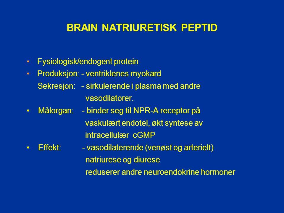 BRAIN NATRIURETISK PEPTID Fysiologisk/endogent protein Produksjon: - ventriklenes myokard Sekresjon: - sirkulerende i plasma med andre vasodilatorer.
