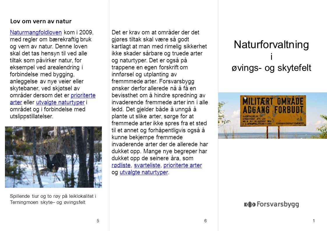 Naturforvaltning i øvings- og skytefelt 165 Lov om vern av natur Bilde/figur (slett boksen før du setter inn bilde). Spillende tiur og to røy på leikl