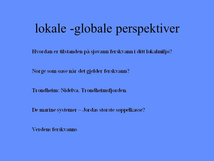 lokale -globale perspektiver