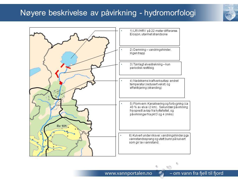 Nøyere beskrivelse av påvirkning - hydromorfologi 1) LRV/HRV på 22 meter differanse. Erosjon, utarmet strandsone 2) Demning – vandringshinder. Ingen t