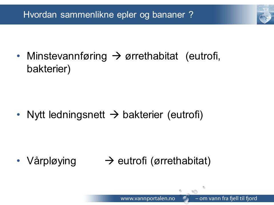 Hvordan sammenlikne epler og bananer ? Minstevannføring  ørrethabitat (eutrofi, bakterier) Nytt ledningsnett  bakterier (eutrofi) Vårpløying  eutro