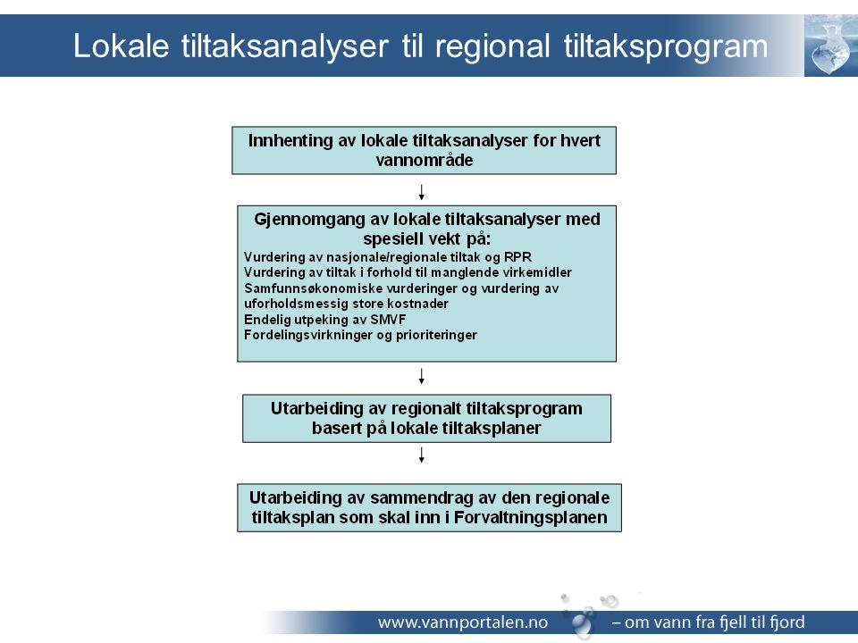 Lokale tiltaksanalyser til regional tiltaksprogram