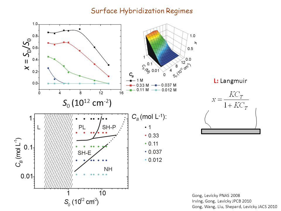 x = S D /S 0 S 0 (10 12 cm -2 ) L: Langmuir Gong, Levicky PNAS 2008 Irving, Gong, Levicky JPCB 2010 Gong, Wang, Liu, Shepard, Levicky JACS 2010 Surface Hybridization Regimes