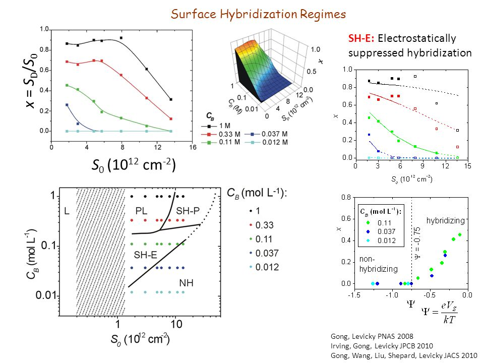 x = S D /S 0 S 0 (10 12 cm -2 ) Gong, Levicky PNAS 2008 Irving, Gong, Levicky JPCB 2010 Gong, Wang, Liu, Shepard, Levicky JACS 2010 SH-E: Electrostatically suppressed hybridization Surface Hybridization Regimes