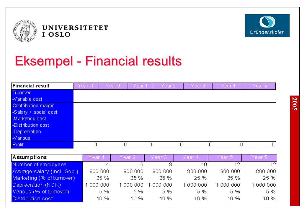 2005 Eksempel - Financial results