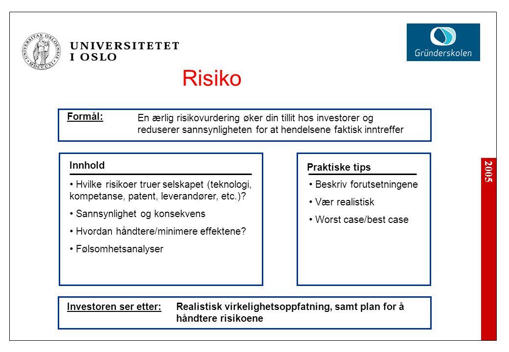 2005 Investoren ser etter: Beskriv forutsetningene Vær realistisk Worst case/best case Innhold Praktiske tips Hvilke risikoer truer selskapet (teknolo