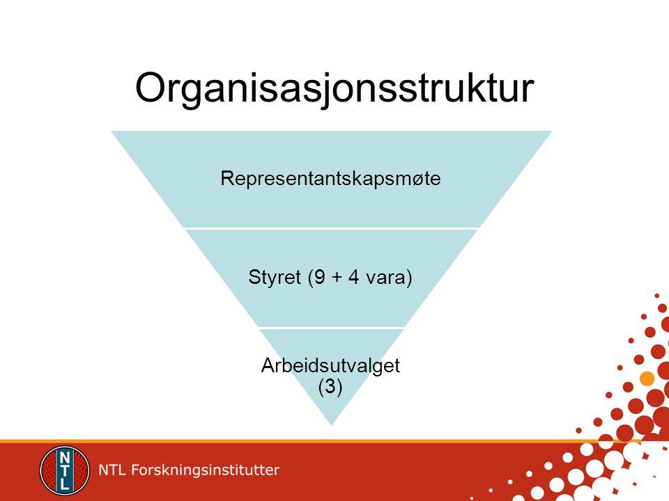Organisasjonsstruktur Representantskapsmøte Styret (9 + 4 vara) Arbeidsutvalget (3)