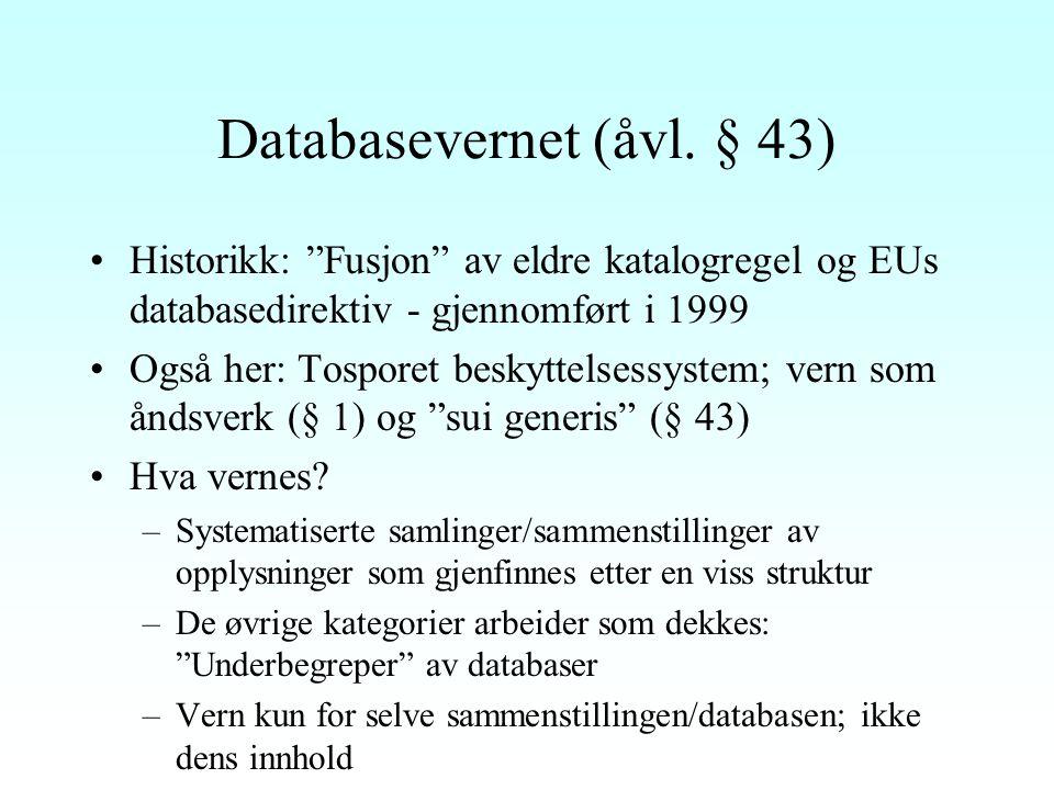 Databasevernet (åvl.