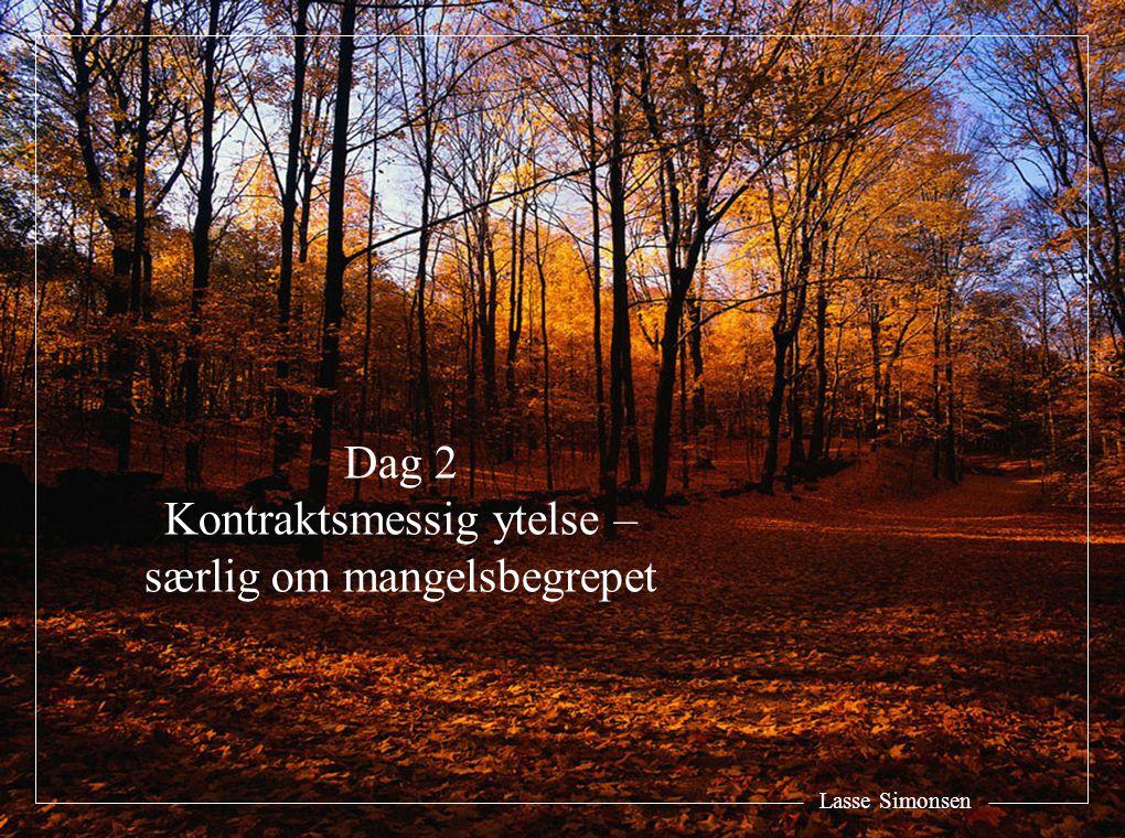 Lasse Simonsen Dag 2 Kontraktsmessig ytelse – særlig om mangelsbegrepet