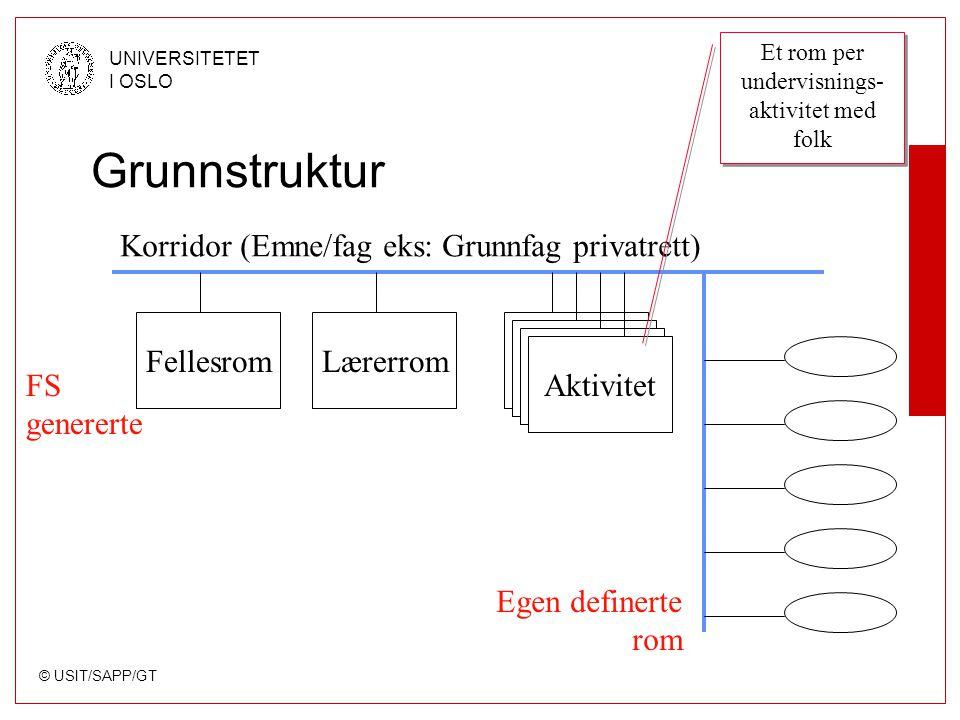 © USIT/SAPP/GT UNIVERSITETET I OSLO Grunnstruktur Korridor (Emne/fag eks: Grunnfag privatrett) Fellesrom Aktivitet Egen definerte rom FS genererte Lær
