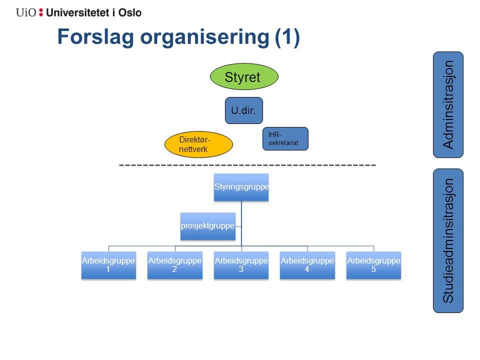 Forslag organisering (1) Styringsgruppe Arbeidsgruppe 1 Arbeidsgruppe 2 Arbeidsgruppe 3 Arbeidsgruppe 4 Arbeidsgruppe 5 prosjektgruppe Direktør- nettverk Styret IHR- sekretariat U.dir.