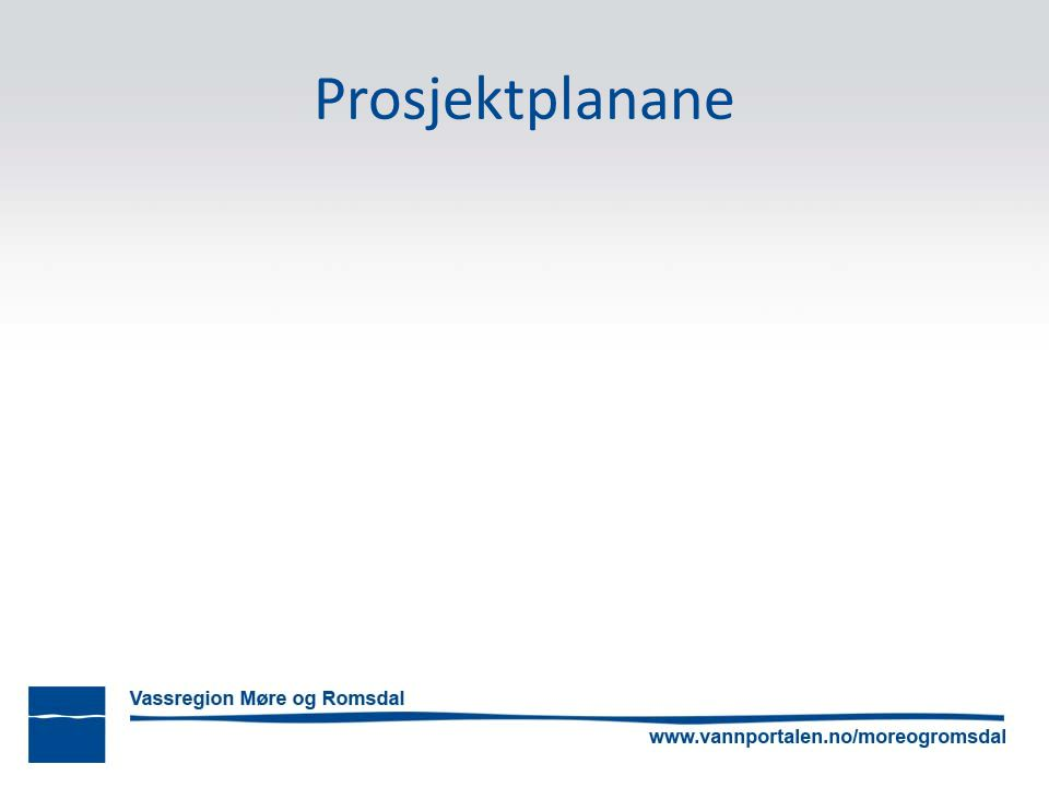 Prosjektplanane