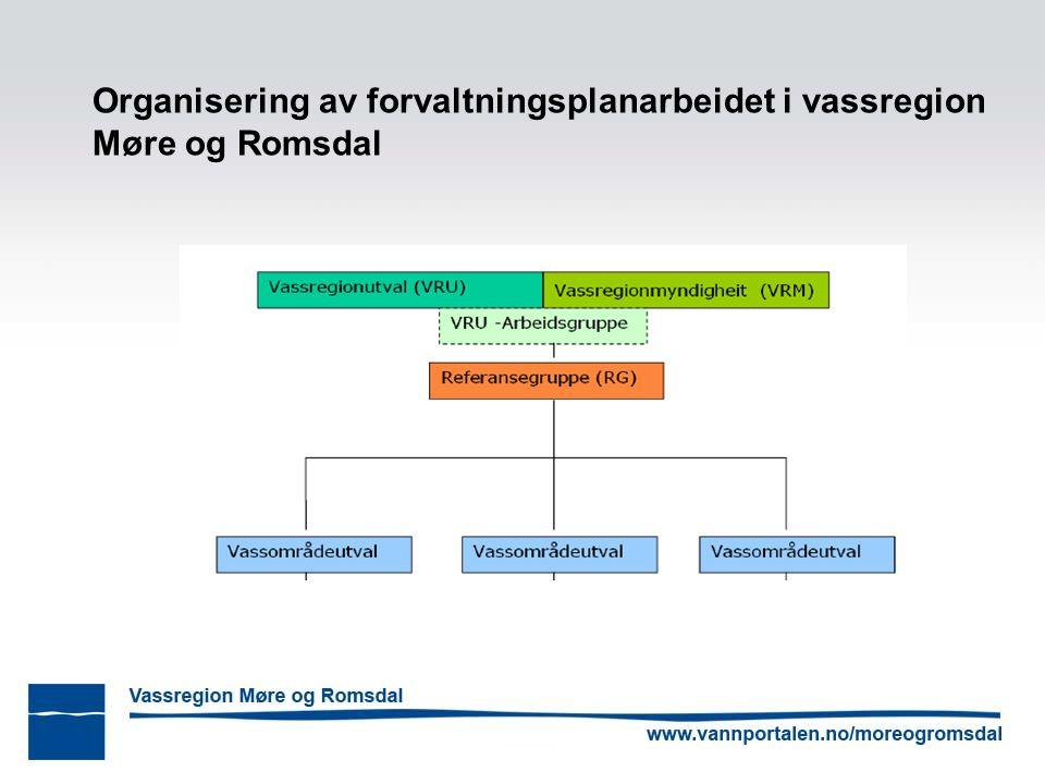 Organisering av forvaltningsplanarbeidet i vassregion Møre og Romsdal