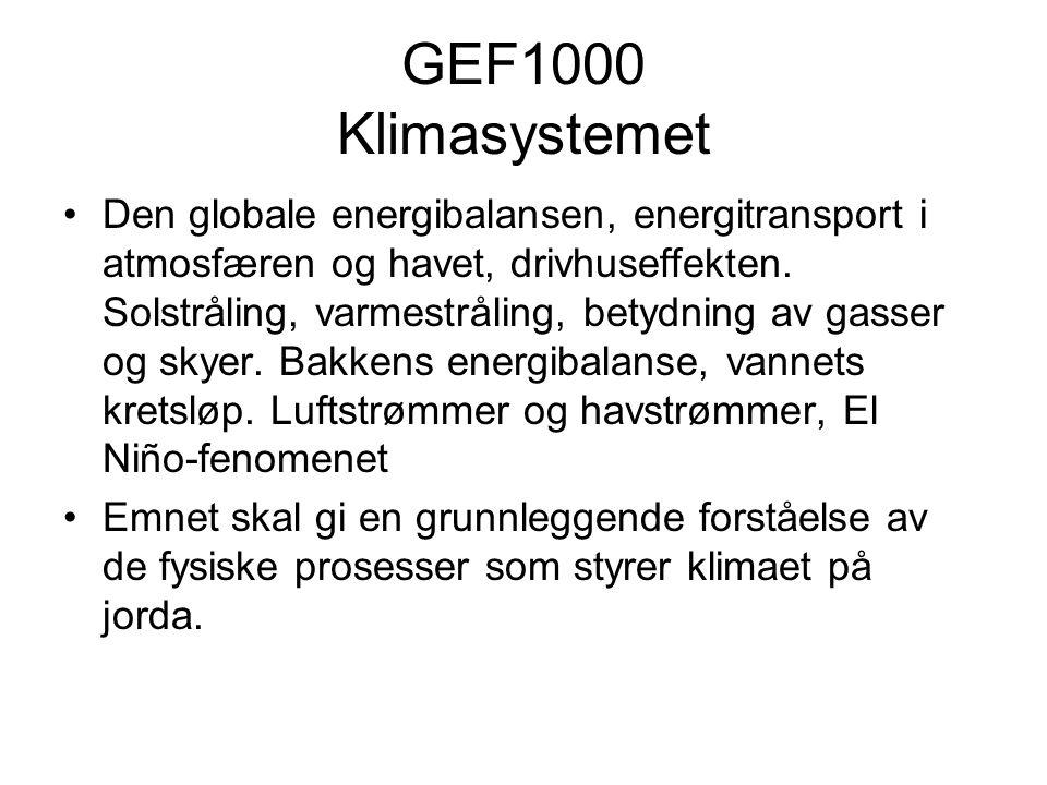 Undervisning/Eksamen Undervisning (Terje Berntsen/Jan Erik Weber/Ivan Føre) Forelesninger, 3t.