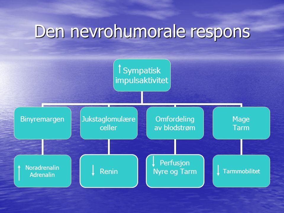 Sympatisk impulsaktivitet BinyremargenJukstaglomulære celler Omfordeling av blodstrøm Mage Tarm Den nevrohumorale respons
