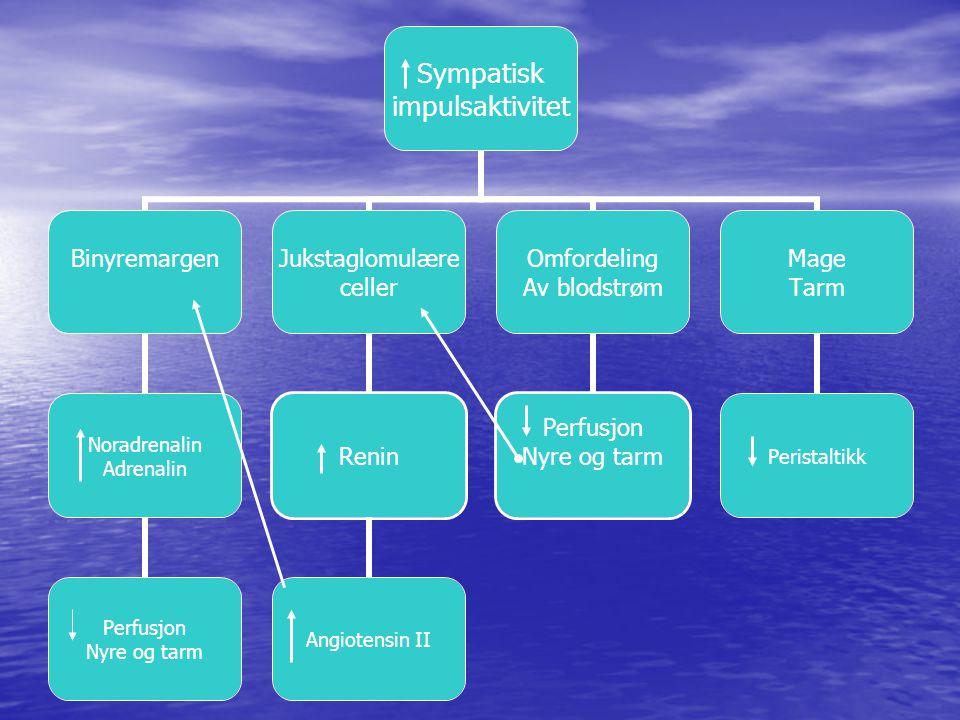 Sympatisk impulsaktivitet Binyremargen Noradrenalin Adrenalin Perfusjon Nyre og tarm Jukstaglomulære celler Renin Angiotensin II Omfordeling Av blodstrøm Perfusjon Nyre og tarm Mage Tarm Peristaltikk