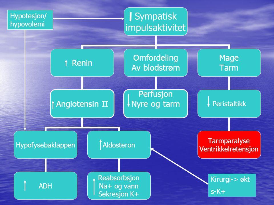 Hypotesjon/ hypovolemi Kirurgi-> økt s-K+