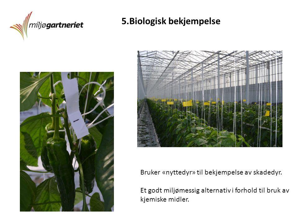 5.Biologisk bekjempelse Bruker «nyttedyr» til bekjempelse av skadedyr.