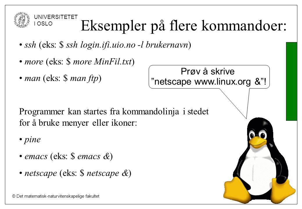 © Det matematisk-naturvitenskapelige fakultet UNIVERSITETET I OSLO Eksempler på flere kommandoer: ssh (eks: $ ssh login.ifi.uio.no -l brukernavn) more (eks: $ more MinFil.txt) man (eks: $ man ftp) Programmer kan startes fra kommandolinja i stedet for å bruke menyer eller ikoner: pine emacs (eks: $ emacs &) netscape (eks: $ netscape &) Prøv å skrive netscape www.linux.org & !