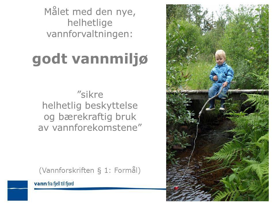 Målet med den nye, helhetlige vannforvaltningen: godt vannmiljø sikre helhetlig beskyttelse og bærekraftig bruk av vannforekomstene (Vannforskriften § 1: Formål)