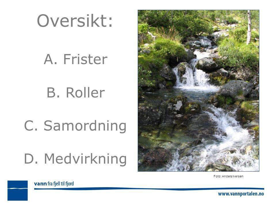 Oversikt: A. Frister B. Roller C. Samordning D. Medvirkning Foto: Anders Iversen