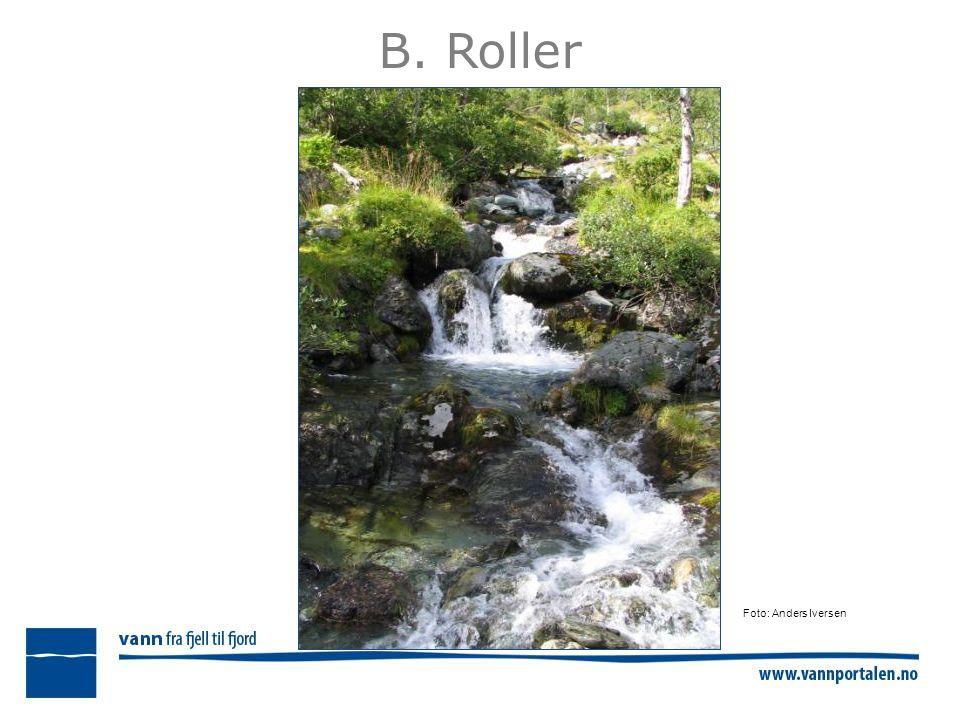 B. Roller Foto: Anders Iversen