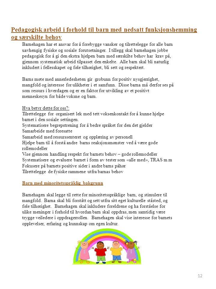 12 Pedagogisk arbeid i forhold til barn med nedsatt funksjonshemming og særskilte behov Barnehagen har et ansvar for å forebygge vansker og tilrettelegge for alle barn uavhengig fysiske og sosiale forutsetninger.