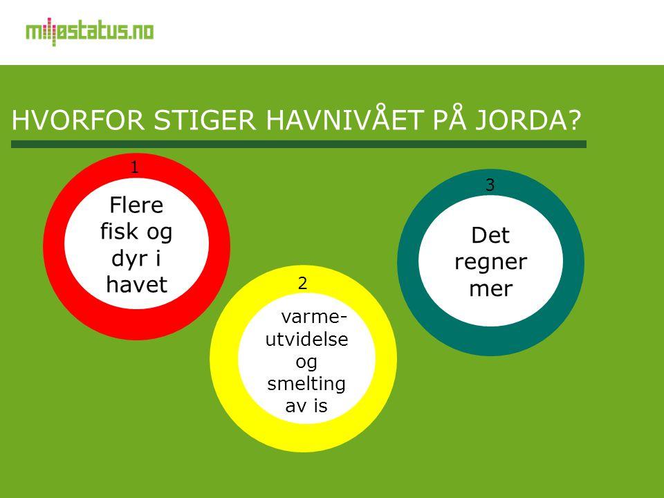 HVORFOR STIGER HAVNIVÅET PÅ JORDA?, varme- utvidelse og smelting av is Det regner mer Flere fisk og dyr i havet 1 3 2