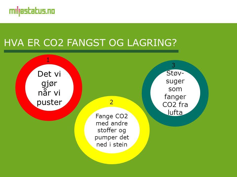 HVA ER CO2 FANGST OG LAGRING? Fange CO2 med andre stoffer og pumper det ned i stein Det vi gjør når vi puster Støv- suger som fanger CO2 fra lufta 1 2