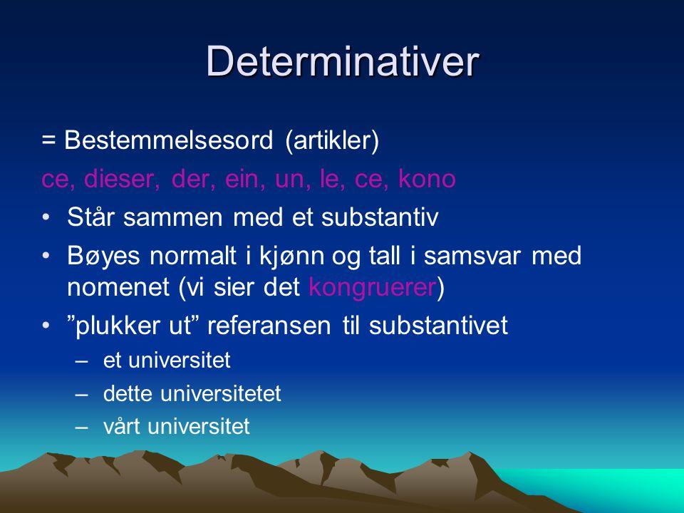 Determinativer = Bestemmelsesord (artikler) ce, dieser, der, ein, un, le, ce, kono Står sammen med et substantiv Bøyes normalt i kjønn og tall i samsv