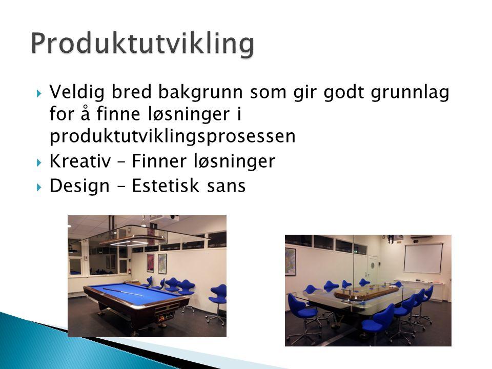  Veldig bred bakgrunn som gir godt grunnlag for å finne løsninger i produktutviklingsprosessen  Kreativ – Finner løsninger  Design – Estetisk sans