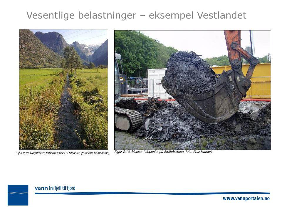 Avklaring- Biologiske påvirkninger Foto: Norges Jeger- og Fiskerforbund Foto: Marianne Gjørv