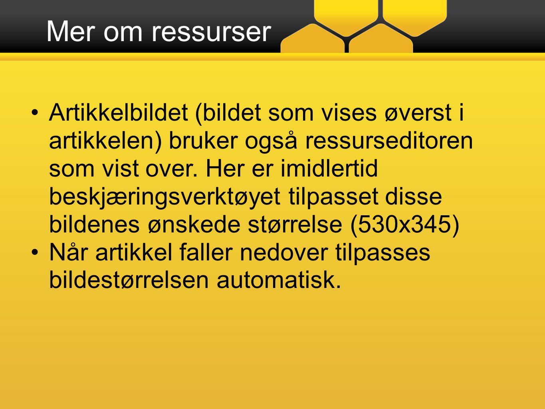Mer om ressurser Artikkelbildet (bildet som vises øverst i artikkelen) bruker også ressurseditoren som vist over.